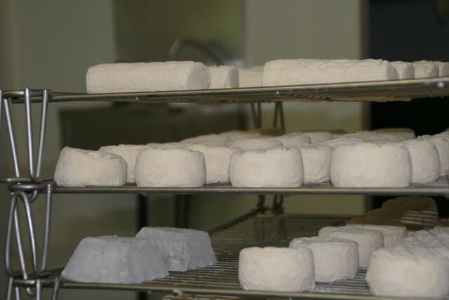 À propos univers-bio-fromage